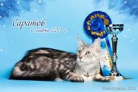 Best in Show 3 ПДШ