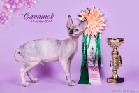 Best of Breed Regionall - BBR 2015